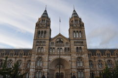 Natural History Museum in London Royalty Free Stock Images