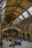 Natural History Museum - London - England. The Natural History Museum in London, England, is home to life and earth science specimens comprising some 80 million Stock Photo