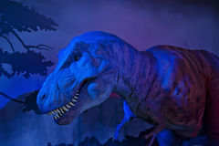 Natural History Museum. LONDON, ENGLAND - MAY 30: Animatronic dinosaur T-Rex at the Natural History Museum on May 30, 2015 in London Royalty Free Stock Photography
