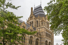 Natural History Museum in London, England Royalty Free Stock Photography