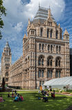 Natural History Museum London England Royalty Free Stock Photos