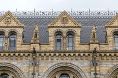 Natural History Museum in London, England Royalty Free Stock Photos