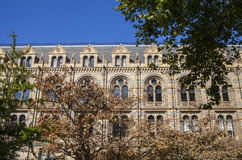 Natural History Museum in London Stock Photography