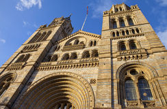 Natural History Museum in London Royalty Free Stock Image