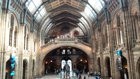 Natural history museum London Royalty Free Stock Photos