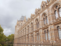 Natural History Museum, London, UK Stock Photography