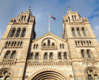 Natural History Museum - London - UK Stock Images