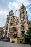 Natural History Museum in London. royalty free stock photo