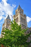 The Natural History Museum in London Stock Images
