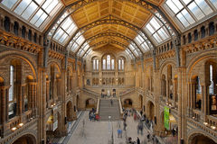 Natural History Museum Main Hall Stock Photography