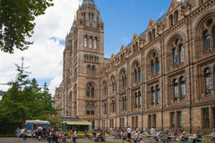 The Natural History Museum is one of the most favorite museum for tourist in London. Royalty Free Stock Photography