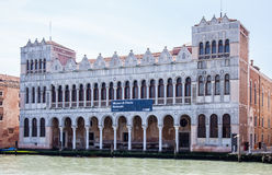Natural History Museum of Venice Royalty Free Stock Images