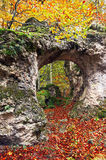 Natural hole on rock in autumn forest Stock Images