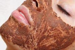 Natural homemade fruit facial masks. Fresh fruit Stock Images