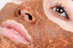 Natural homemade fruit facial masks. Fresh fruit Stock Photography