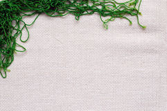 Natural homespun fabric Stock Image