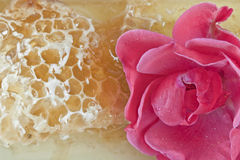 Natural honey. With honeycomb and rose stock images