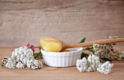Natural honey Stock Images