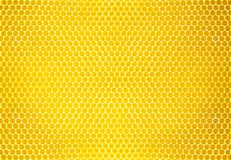 Natural Honey Comb Background Or Texture Stock Photos