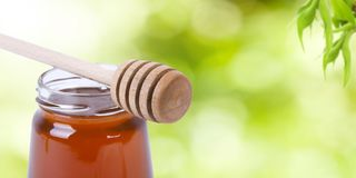 Natural Honey On Nature Green Stock Image