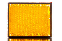 Natural honeycomb in frame Royalty Free Stock Photo