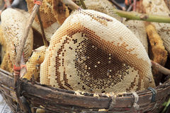 Natural honeycomb in fresh market Royalty Free Stock Photography