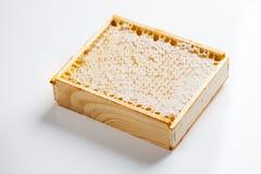 Natural honeycomb Royalty Free Stock Photography