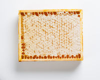 Natural honeycomb wax in frame Royalty Free Stock Image