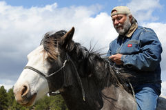 Natural horsemanship. With rider astride Spanish Mustang stock image