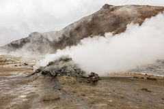 Natural Hot Springs geyser in Iceland with Steam Stock Image