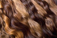Natural human hair Royalty Free Stock Photography