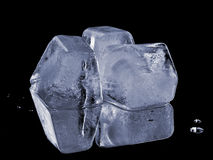 Natural ice cubes Stock Photography