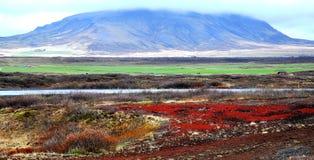 Natural icelandic landscape Stock Images