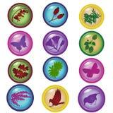 Natural icons. Set of bright glossy natural vector icons Stock Image
