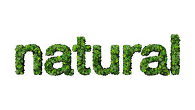 Natural. Illustration of text 'natural' in lowercase letters decorated in shades of green, concept  implying unprocessed, pure  food or other materials, white Stock Image