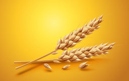 Natural ingredient element. Close up look at wheat  on yellow background in 3d illustration Stock Photo