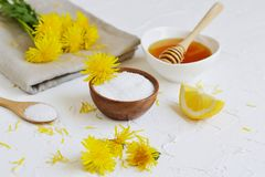 Natural ingredients for homemade body salt scrub with dandelion flowers, lemon, honey and olive oil. Natural ingredients for homemade body face hair salt scrub Royalty Free Stock Image