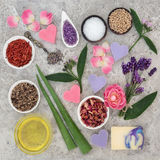 Natural Ingredients for Skin Health Care. To help heal eczema and psoriasis royalty free stock photography