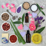 Natural Ingredients for Skin Health Care. To help heal and soothe disorders such as eczema and psoriasis stock photography