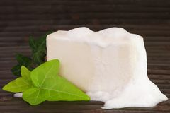 Natural Ingredients Soap with Foam Stock Photos