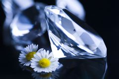 Natural jewel - Diamond Royalty Free Stock Photo