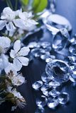Natural jewel - Diamond Stock Photography