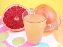 Natural juice Stock Image