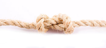 Natural knot Stock Images