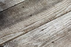Natural knotted gray weathered wood plank texture background.  stock photography