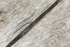 Natural knotted gray weathered wood plank texture background.  royalty free stock photography