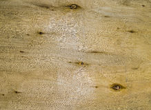 Natural knotted wood texture as background. Stock Images