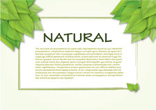 Natural label. An image with a green life theme, a big  label for a lot of text Royalty Free Stock Photography