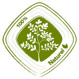A natural label with plants Royalty Free Stock Photos