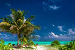 Natural laid-back tropical beach with vibrant lagoon in Maldives. Natural laid-back tropical beach with vibrant green lagoon in Maldives Stock Photos
